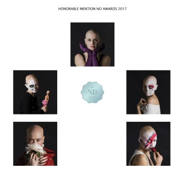 Honorable Mention ND Awards 2017