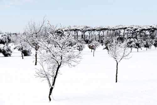 Parco degli Acquedotti innevato 2018